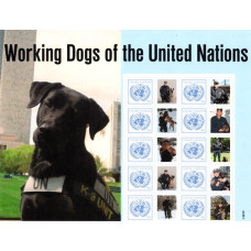 2011 United Nations K-9 Unit