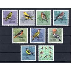 1966 Πολωνία Πουλιά