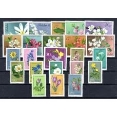 1964 Πολωνία Λουλούδια