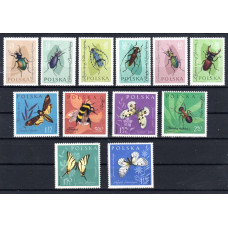1962 Poland Insects