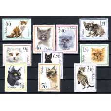 1964 Poland Cats