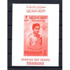 Sharjah Boy Scouts