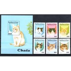 Γουινέα Γάτες