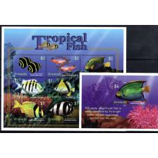 Grenada Tropical Fish