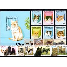 Animals Various
